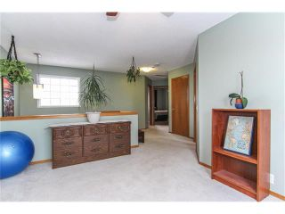 Photo 17: 9177 21 Street SE in Calgary: Riverbend House for sale : MLS®# C4096367