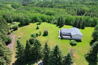 Photo 48: 49461 RGE RD 22: Rural Leduc County House for sale : MLS®# E4247442