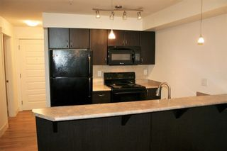 """Photo 9: 115 2515 PARK Street in Abbotsford: Abbotsford East Condo for sale in """"Viva on Park"""" : MLS®# R2255582"""