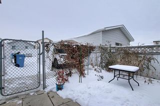 Photo 39: 47 Appleburn Close SE in Calgary: Applewood Park Detached for sale : MLS®# A1049300