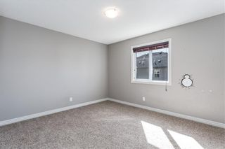 Photo 29: 166 Cranford Green SE in Calgary: Cranston Detached for sale : MLS®# A1062249