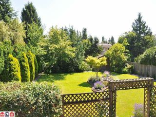 "Photo 7: 17030 JERSEY Drive in Surrey: Cloverdale BC House for sale in ""JERSEY HILLS"" (Cloverdale)  : MLS®# F1221554"