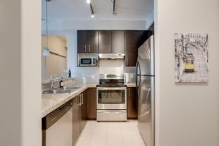 Photo 8: 407 1010 Centre Avenue NE in Calgary: Bridgeland/Riverside Apartment for sale : MLS®# A1102043