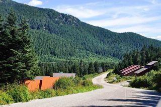 "Photo 11: 20716 SAKWI CREEK Road in Mission: Hemlock Land for sale in ""Hemlock Valley Ski Resort"" : MLS®# R2176457"