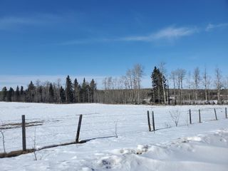 Photo 10: 0 NW9-33-5W5: Sundre Commercial Land for sale : MLS®# A1082207
