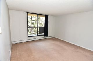 Photo 4: 417 30 Mchugh Court NE in Calgary: Mayland Heights Apartment for sale : MLS®# A1099356
