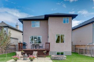 Photo 30: 94 ROYAL BIRKDALE Crescent NW in Calgary: Royal Oak Detached for sale : MLS®# C4267100