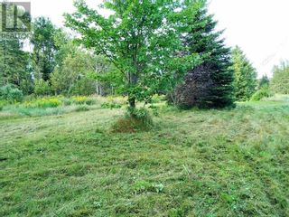 Photo 2: 555 Queens RD in Sackville: Vacant Land for sale : MLS®# M133180