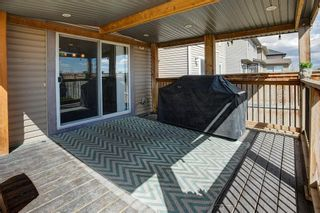 Photo 32: 180 CRANBERRY Circle SE in Calgary: Cranston Detached for sale : MLS®# C4222999
