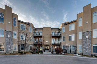 Photo 19: 304 2121 98 Avenue SW in Calgary: Palliser Apartment for sale : MLS®# A1093378