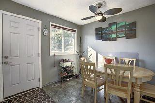 Photo 10: 1711 65 Street NE in Calgary: Pineridge Detached for sale : MLS®# A1038776