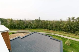 Photo 23:  in Edmonton: Zone 55 House for sale : MLS®# E4233959
