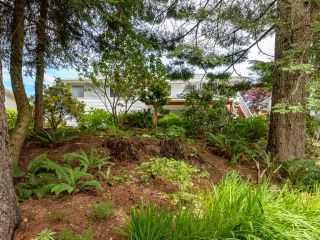 Photo 47: 1435 Sitka Ave in COURTENAY: CV Courtenay East House for sale (Comox Valley)  : MLS®# 843096