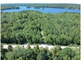 Photo 19: 1775 Trout Lake Road in New Albany: 400-Annapolis County Residential for sale (Annapolis Valley)  : MLS®# 202013496