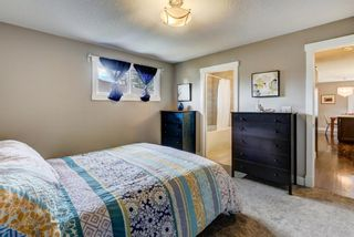 Photo 6: 4203 Dalhart Road NW in Calgary: Dalhousie Detached for sale : MLS®# A1143052