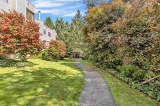 "Photo 4: 208 1220 FALCON Drive in Coquitlam: Upper Eagle Ridge Townhouse for sale in ""EAGLE RIDGE TERRACE"" : MLS®# R2586433"