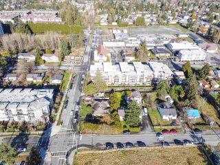 Photo 7: 12060 EDGE Street in Maple Ridge: East Central Duplex for sale : MLS®# R2535359