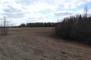 Photo 18: Twp 510 RR 33: Rural Leduc County Rural Land/Vacant Lot for sale : MLS®# E4239253