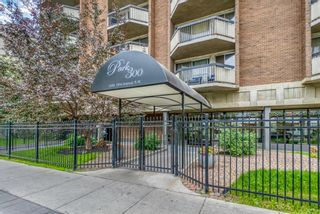 Main Photo: 501 339 13 Avenue SW in Calgary: Beltline Apartment for sale : MLS®# A1132411