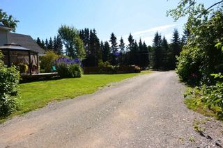 Photo 38: 1562 COTTONWOOD Street: Telkwa House for sale (Smithers And Area (Zone 54))  : MLS®# R2481070