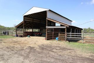 Photo 45: 48342 RR 262: Rural Leduc County House for sale : MLS®# E4231120