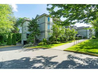 Photo 24: 211 20881 56 Avenue in Langley: Langley City Condo for sale : MLS®# R2553025