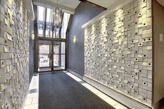 Photo 27: 504 1215 Cameron Avenue SW in Calgary: Lower Mount Royal Apartment for sale : MLS®# A1062739