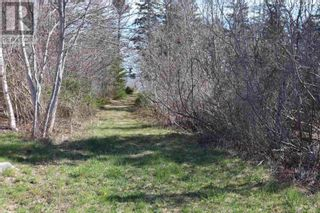 Photo 5: Lot Long Cove Road in Port Medway: Vacant Land for sale : MLS®# 202110309