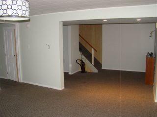 Photo 44: 13507 84A Street in Edmonton: Zone 02 House for sale : MLS®# E4227401