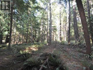 Photo 17: 1239/1241 VANCOUVER BLVD in Savary Island: Vacant Land for sale : MLS®# 16136