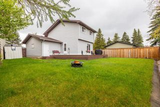 Photo 37: 132 Pineland Place NE in Calgary: Pineridge Detached for sale : MLS®# A1110576