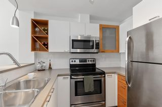 Photo 5: 109 315 24 Avenue SW in Calgary: Mission Apartment for sale : MLS®# A1129699