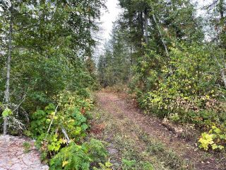 Photo 14: 292 Terry Road, in Enderby: Vacant Land for sale : MLS®# 10239679