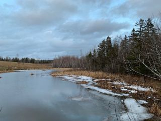 Photo 14: 343 Chance Harbour Road in Hillside: 108-Rural Pictou County Residential for sale (Northern Region)  : MLS®# 202100817