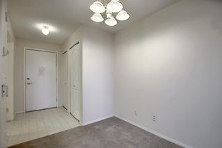 Photo 18: 3225 6818 Pinecliff Grove NE in Calgary: Pineridge Apartment for sale : MLS®# A1053438