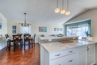 Photo 7: 10 Inverness Place SE in Calgary: McKenzie Towne Detached for sale : MLS®# A1095594