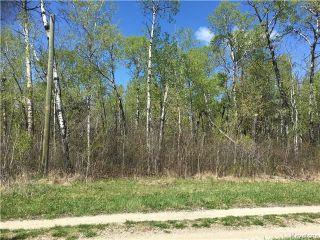 Photo 3: 4 Moon Shadow Road: Lake Manitoba Narrows Residential for sale (R19)  : MLS®# 1805232