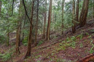 Photo 17: 2604 Yardarm Rd in : GI Pender Island Land for sale (Gulf Islands)  : MLS®# 863927