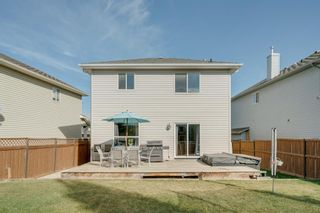 Photo 34: 19 Chapman Close SE in Calgary: Chaparral Detached for sale : MLS®# A1053108