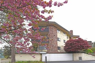 """Photo 1: 317 2551 WILLOW Lane in Abbotsford: Central Abbotsford Condo for sale in """"Valley View Manor"""" : MLS®# R2197974"""