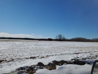 Photo 13: 50317 Rge Road 10: Rural Parkland County Rural Land/Vacant Lot for sale : MLS®# E4229985