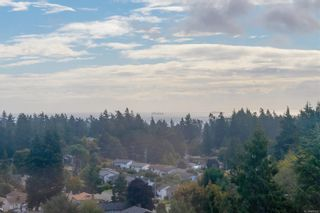 Photo 24: 14 3341 Mary Anne Cres in Colwood: Co Triangle Row/Townhouse for sale : MLS®# 887452