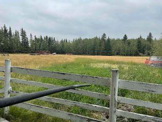 Photo 50: 1405 TWP RD 584: Rural Barrhead County House for sale : MLS®# E4262464