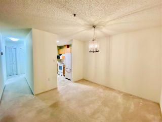 Photo 15: 203 17511 98A Avenue in Edmonton: Zone 20 Condo for sale : MLS®# E4224086