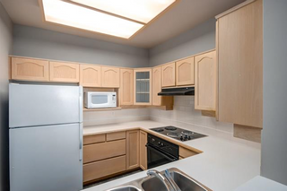 Photo 9: 301 8500 General Currie Road in : Brighouse South Condo for sale (Richmond)  : MLS®# R2109211