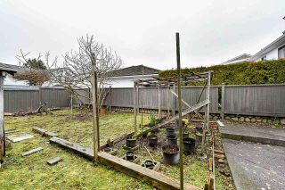Photo 28: 7315 RUPERT Street in Vancouver: Fraserview VE House for sale (Vancouver East)  : MLS®# R2542118