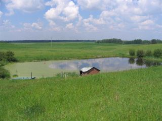 Photo 13: 231076 TWP 480: Rural Wetaskiwin County House for sale : MLS®# E4240854