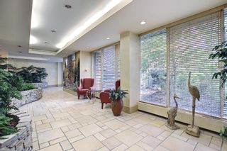 Photo 41: 302 4603 Varsity Drive NW in Calgary: Varsity Apartment for sale : MLS®# A1117877