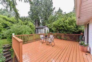 "Photo 19: 11366 LOUGHREN Drive in Surrey: Bolivar Heights House for sale in ""BIRDLAND"" (North Surrey)  : MLS®# R2373377"