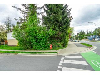 Photo 31: 5000 203 Street in Langley: Langley City House for sale : MLS®# R2572132